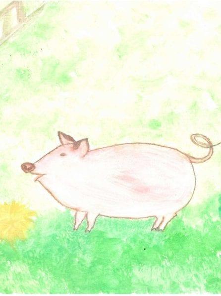 micro pig drawing