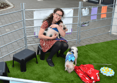 biscuit and popcorn the two micro pigs at a party in london