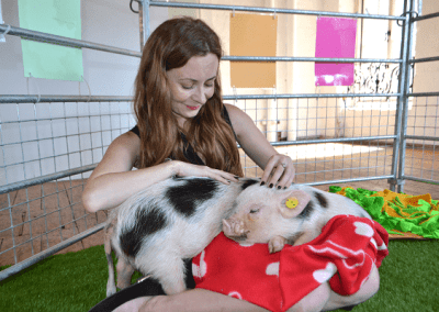 a lady stroking two micro piglets in london