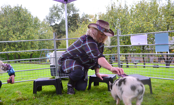 country party with a miniature pig polly surrey uk