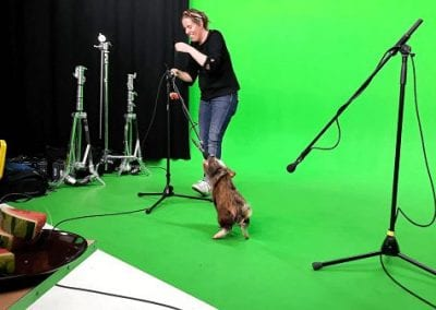 micro pig holly speaking to a microphone in london