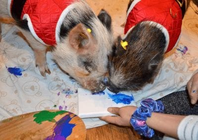 Miniature pigs Holly and Polly Painting on a canvas