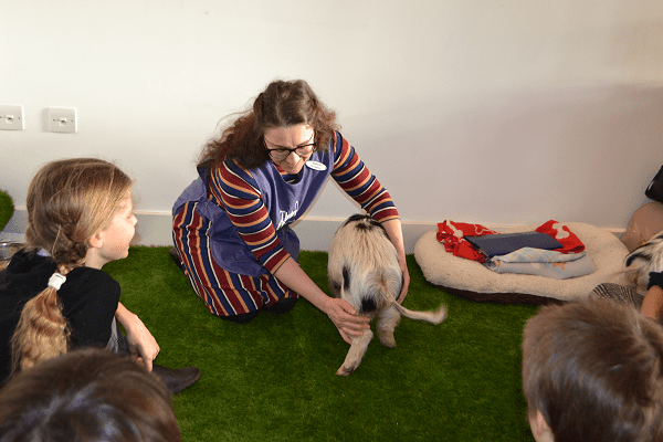 Children learning about Miniature Pigs at a party UK