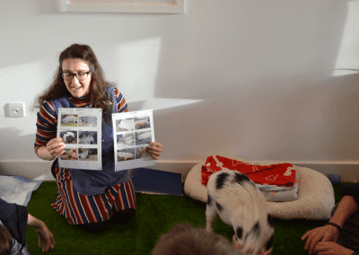 The Pigfather's Miniature Pig Parties are both fun and educational