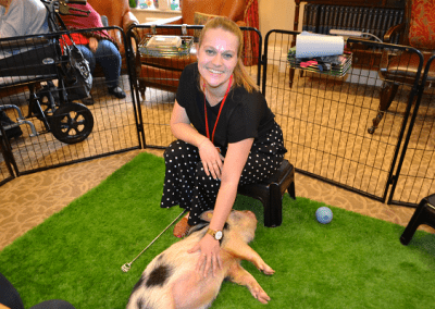 polly the miniature pig visiting a care home in london