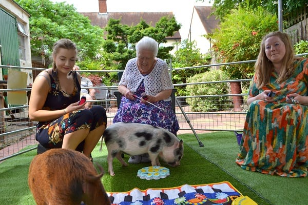 piggy birthday party with miracle and ella in london