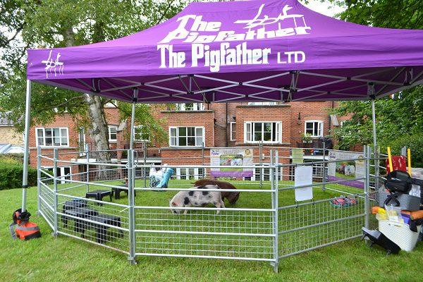 the pigfather's gazebo set up in london