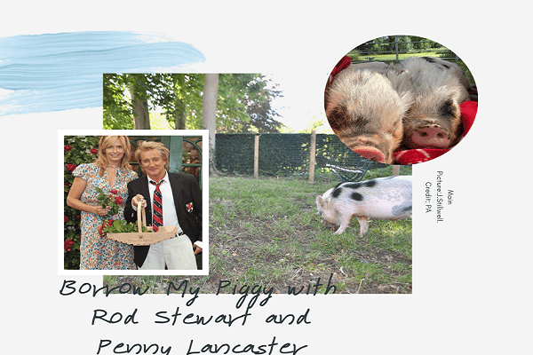 Borrow My Piggy at Durrington house with Rod Stewart