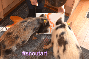 snoutart poly and holly painting