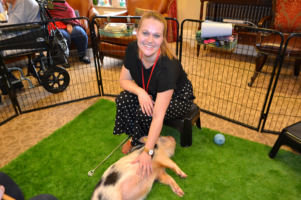 care home visit in London with micro pigs holly and polly